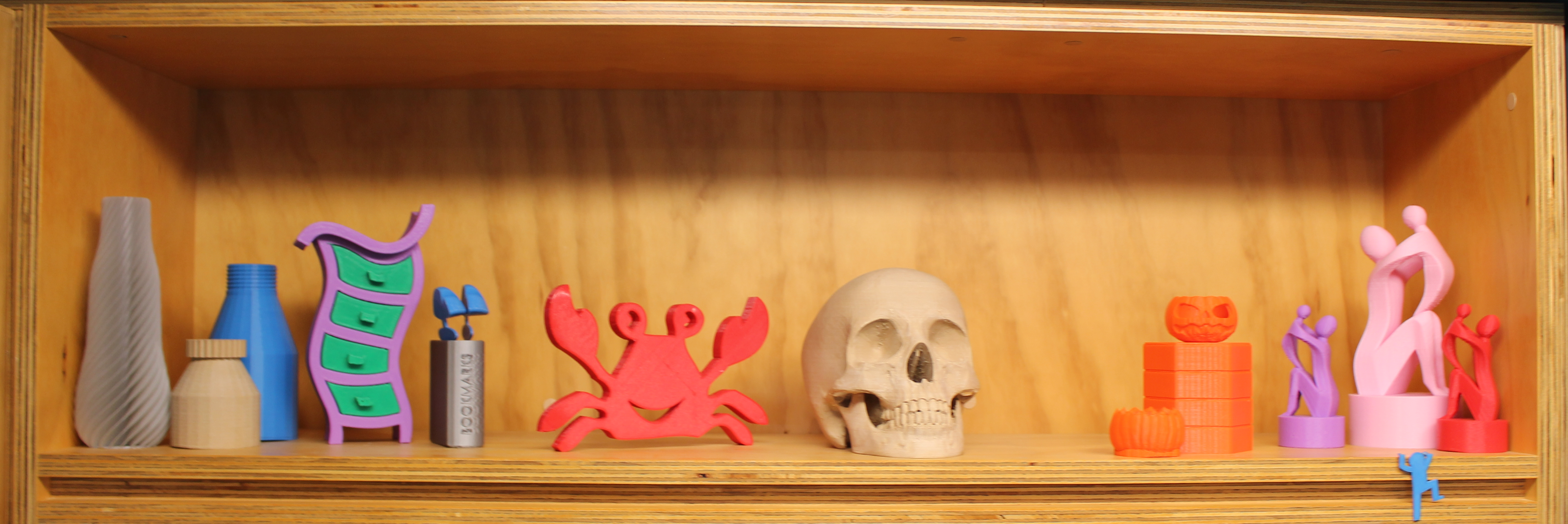 Shelf of 3D Prints